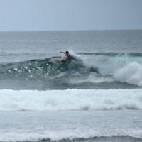 démonstration du moniteur lors d'un cours de surf